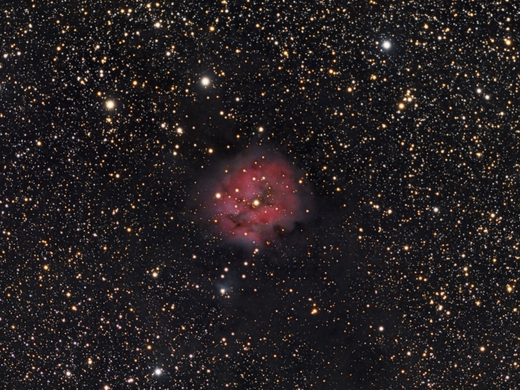 IC5146, Cocoon maglica