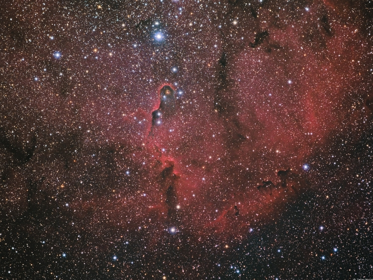 Elephant`s Trunk - IC1396