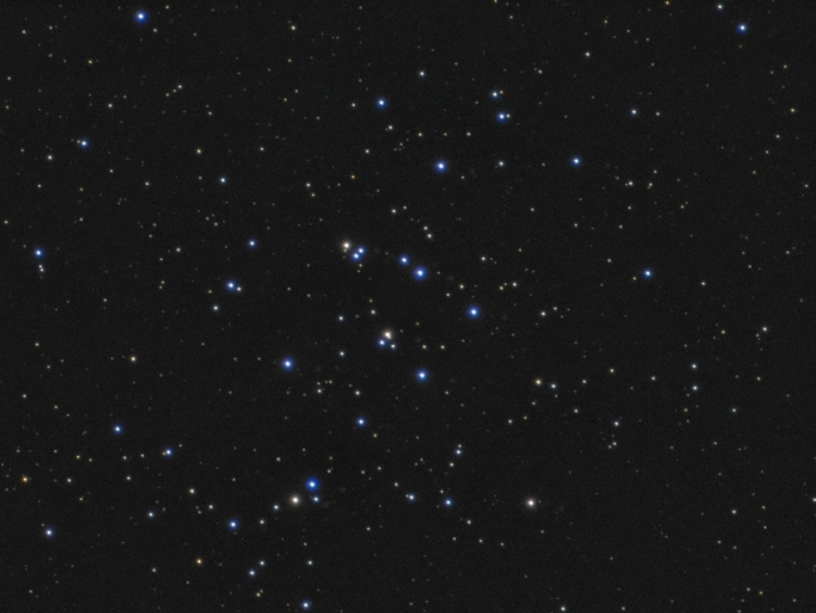 M44 (The Beehive Cluster)