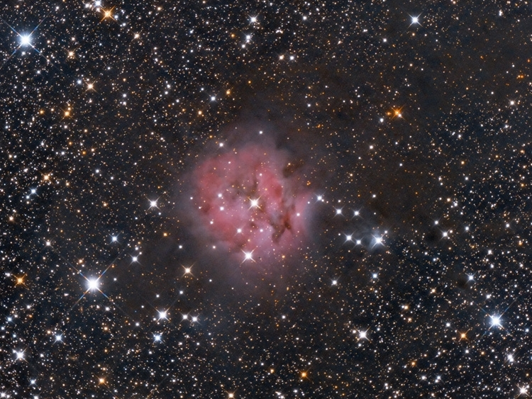 IC5146 - Cocoon maglica